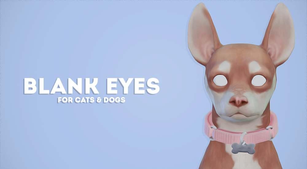 Линзы - Blank Eyes