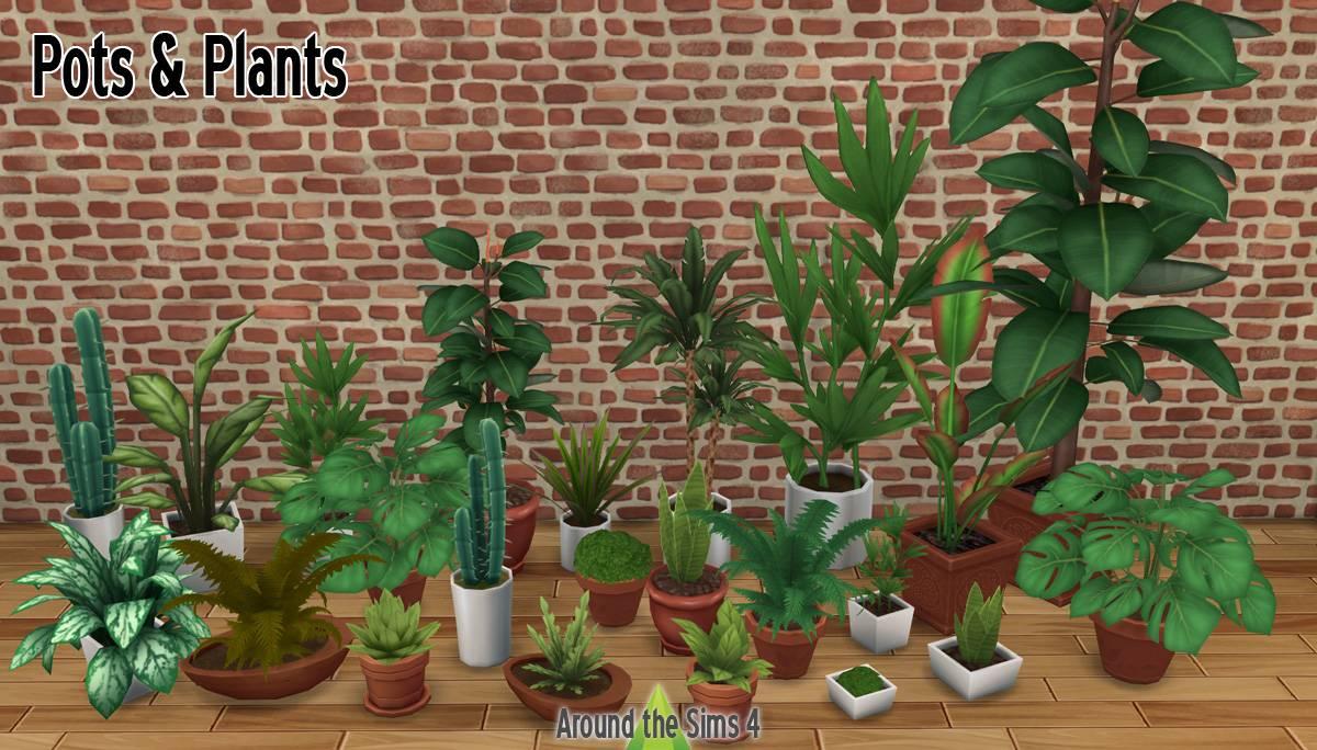 Растения и горшки - Pots & Plants