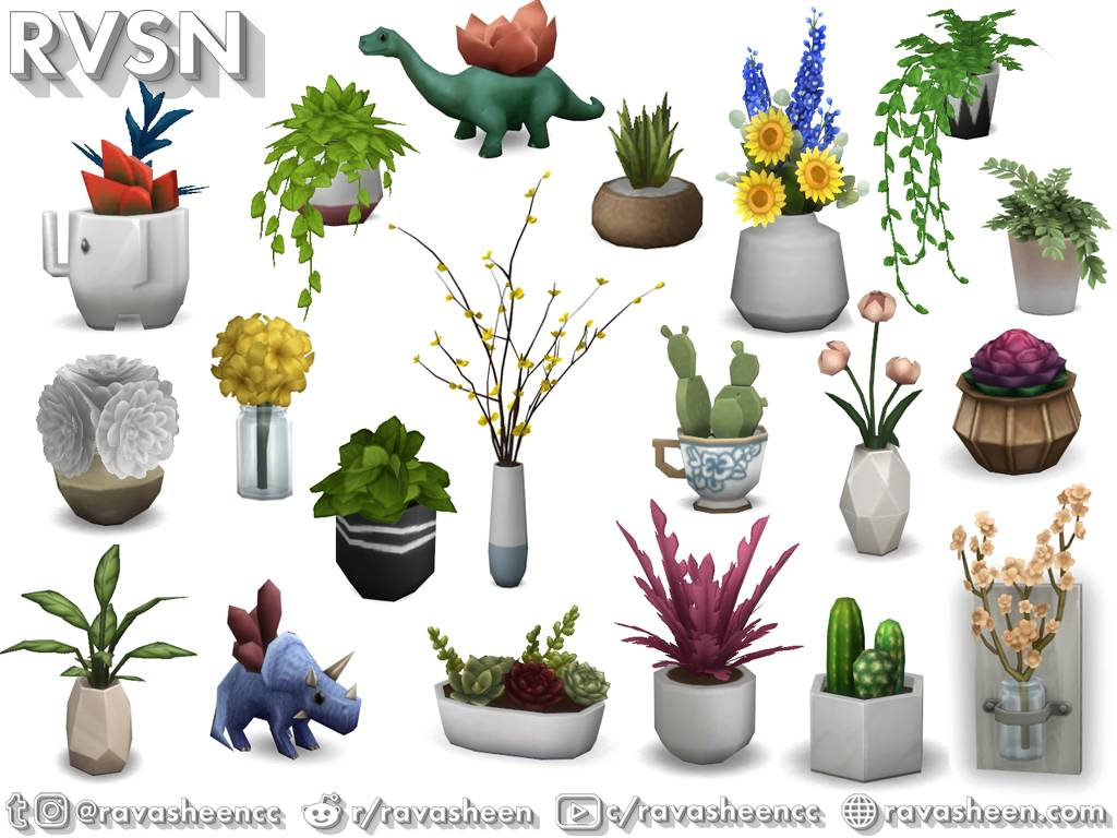 Комнатные растения - Rooting For You Plant Set