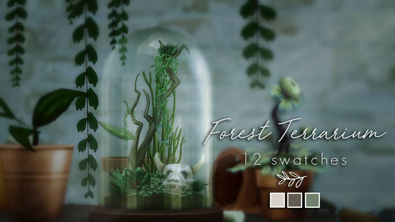Террариум - Forest Terrarium