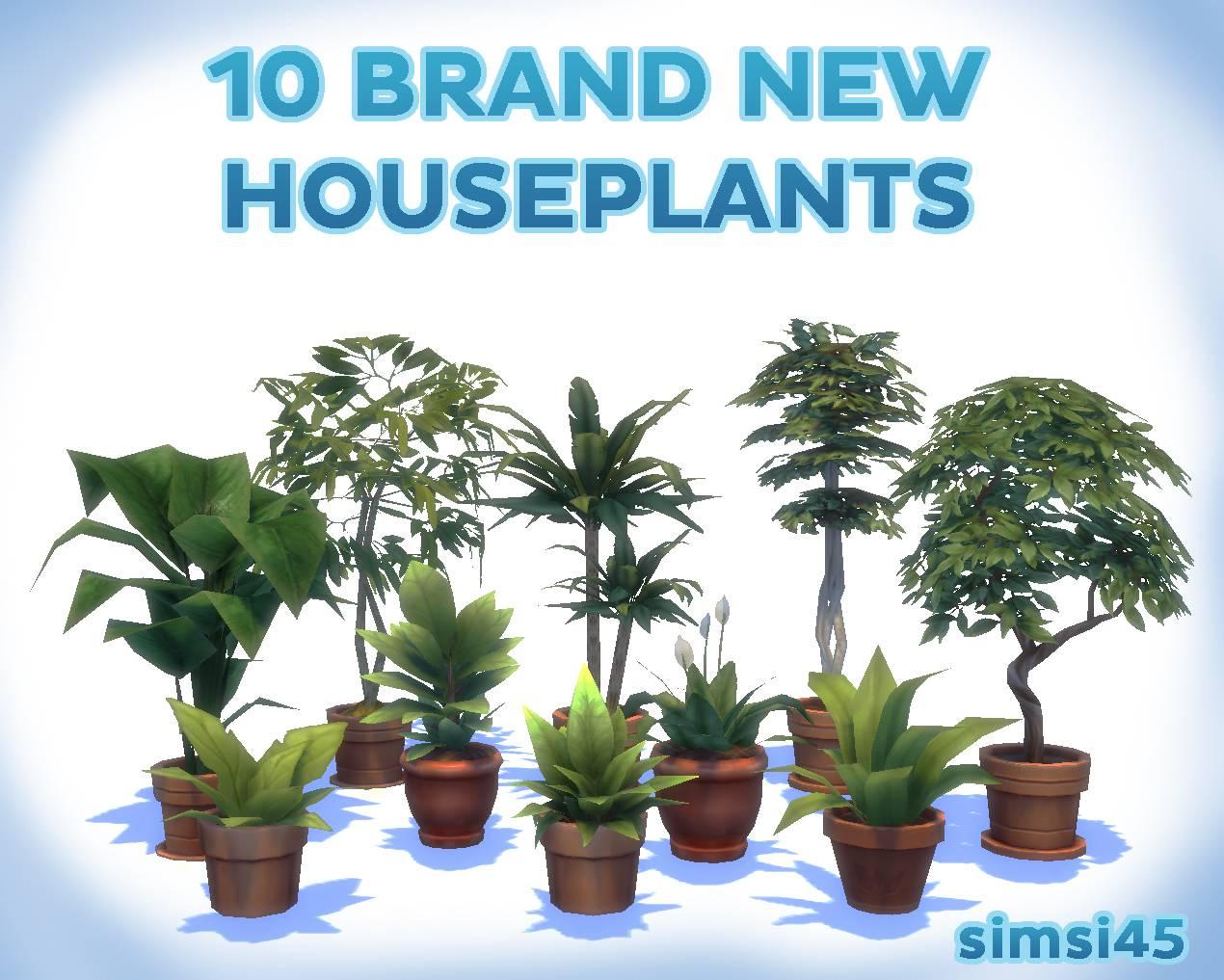 Набор комнатных растений - 10 Potted Houseplants! (pt1)