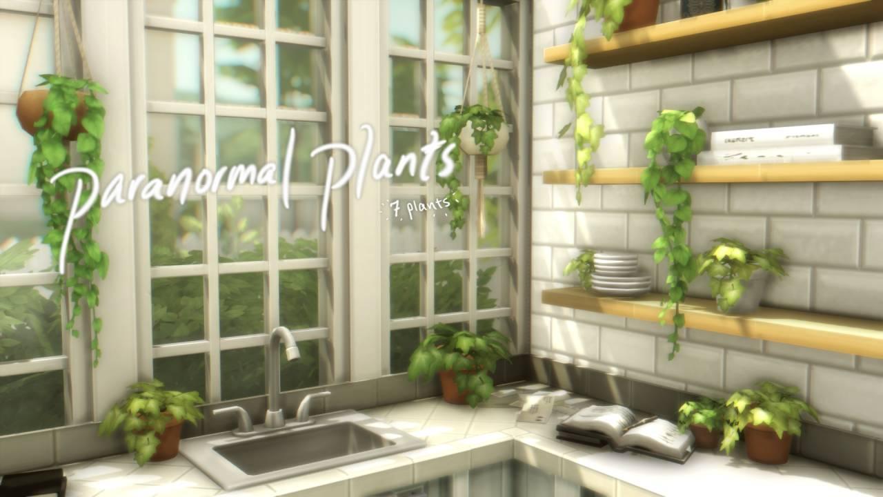 Набор комнатных растений - paironormal plants