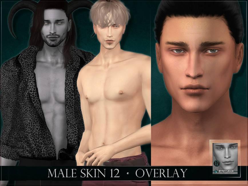 Мужской скинтон - Male skin 12 Overlay