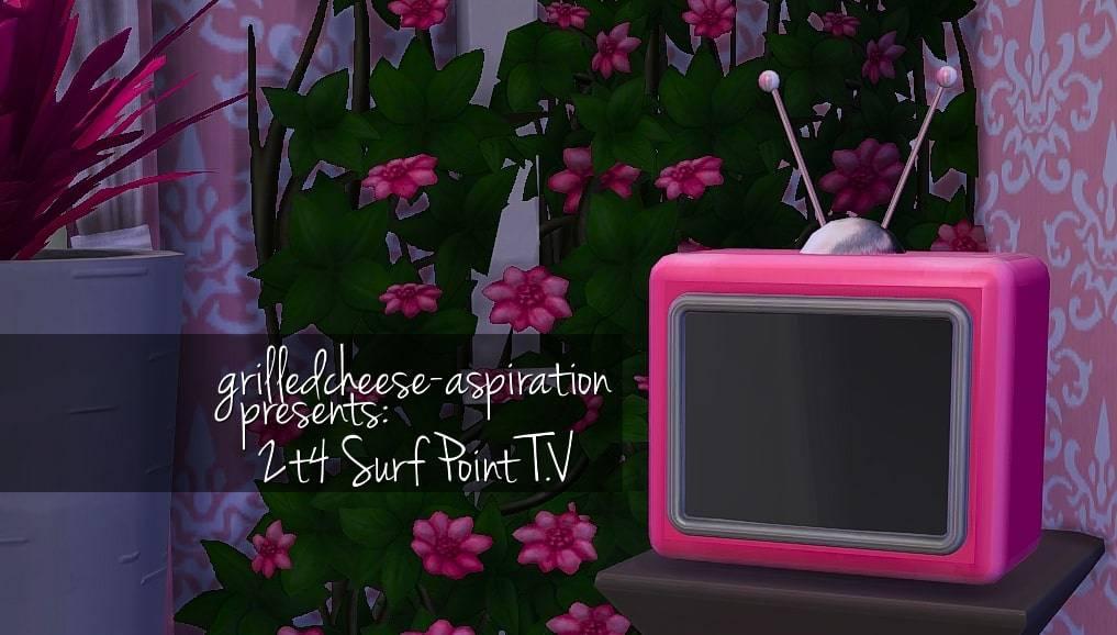 Телевизор - 2t4 Surf Point T.V.