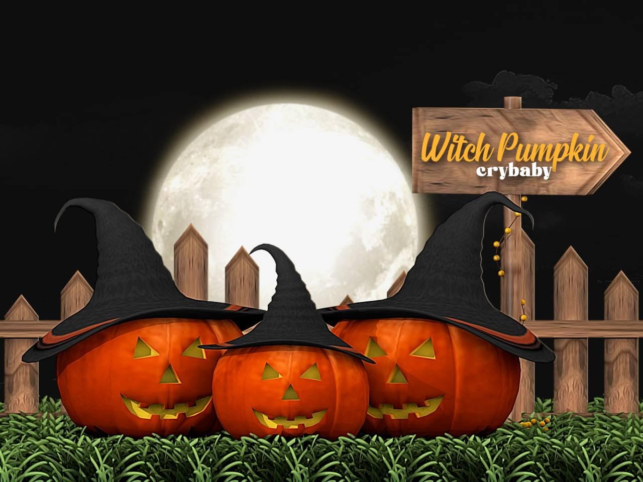 Тыквы - witch pumpkin